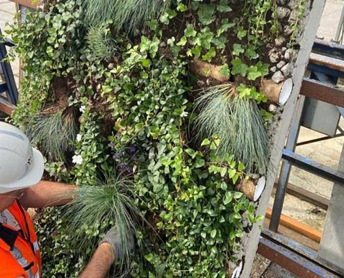 Holcim wand maken met planten